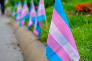 small transgender flags blowing in the wind